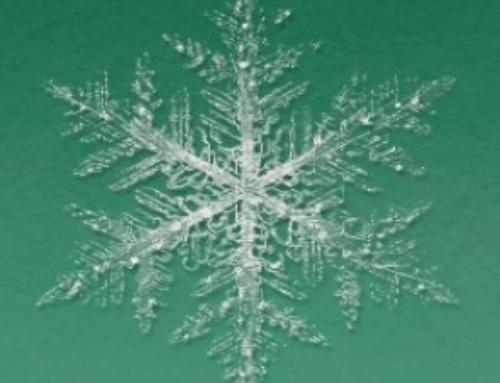 Klimawartung Winteraktion